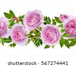 horizontal floral border.... | Shutterstock . vector #567274441