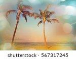 Serenity Tropical Beach ...