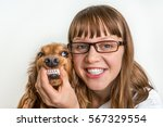 Stock photo funny smiling dog and veterinarian in veterinary clinic animal and pet veterinary care concept 567329554