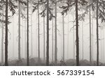 background seamless horizontal... | Shutterstock .eps vector #567339154