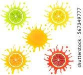 citrus fruit in splashes of... | Shutterstock .eps vector #567349777