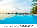 beautiful luxury outdoor... | Shutterstock . vector #567418195