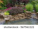 the pond area in an aquatic... | Shutterstock . vector #567561121