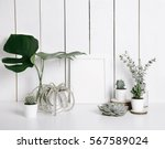 stylish feminine space with... | Shutterstock . vector #567589024