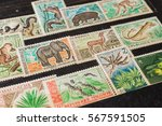 stamp collecting. philatelic.... | Shutterstock . vector #567591505
