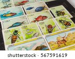 stamp collecting. philatelic.... | Shutterstock . vector #567591619