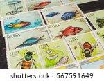 stamp collecting. philatelic.... | Shutterstock . vector #567591649