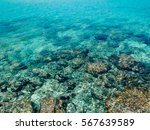 bliue crystal water in the... | Shutterstock . vector #567639589