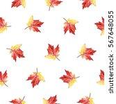 hand drawn watercolor autumn...   Shutterstock . vector #567648055