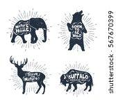 hand drawn textured vintage... | Shutterstock .eps vector #567670399