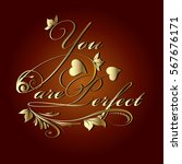 you are perfect.calligraphic... | Shutterstock .eps vector #567676171