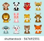 funny and cute animals vector... | Shutterstock .eps vector #567692551