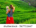 beautiful view of balinese... | Shutterstock . vector #567711667