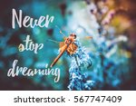 beautiful picture with a... | Shutterstock . vector #567747409