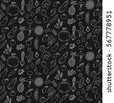 black and white fruits... | Shutterstock .eps vector #567778951