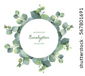 watercolor hand painted wreath... | Shutterstock . vector #567801691