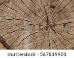 Wood Texture Saw Cut On