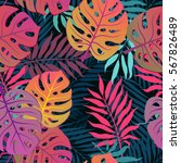 summer exotic floral tropical... | Shutterstock .eps vector #567826489
