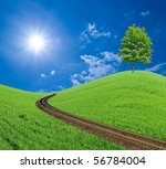 Green Tree Near A Railway