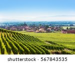 Aerial View Of Alsace Fruit...