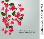 Floral Card With Bougainvillea...