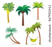 Palm Set. Tropical Trees For...