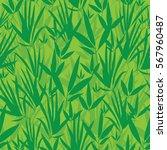 vector fresh green asian bamboo ... | Shutterstock .eps vector #567960487