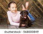 little girl with a labrador... | Shutterstock . vector #568000849