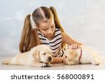 Stock photo little girl with a labrador puppies 568000891