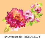 flowers watercolor illustration.... | Shutterstock . vector #568092175