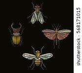butterfly  bee  fly  beetle... | Shutterstock .eps vector #568171015