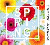 spring flower spring banner... | Shutterstock .eps vector #568293571