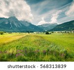 green meadow on the golf club... | Shutterstock . vector #568313839