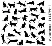 Stock vector cats isolated on white background 568379944