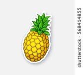 vector illustration. fresh... | Shutterstock .eps vector #568414855