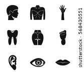 outer part of body icons set....   Shutterstock .eps vector #568430551