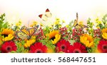 Stock photo amazing background with daisies and sunflowers yellow and red flowers on a white blank floral 568447651