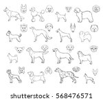 dog breeds  side view and... | Shutterstock .eps vector #568476571
