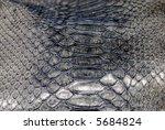 abstract snake texture | Shutterstock . vector #5684824