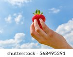 single hand holding a... | Shutterstock . vector #568495291