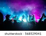 people enjoying the concert | Shutterstock . vector #568529041