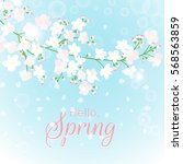 spring branch card. blossoming... | Shutterstock .eps vector #568563859