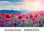 mountain meadow with poppy... | Shutterstock . vector #568663531