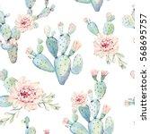 hand drawn watercolor saguaro... | Shutterstock . vector #568695757