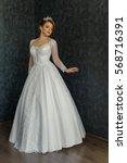 beautiful bride in wedding dress   Shutterstock . vector #568716391