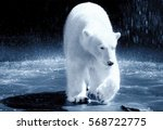 ice bear | Shutterstock . vector #568722775