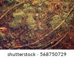 abstract vintage background... | Shutterstock . vector #568750729