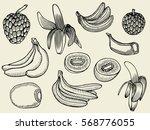 tropical fruits set. hand drawn ... | Shutterstock .eps vector #568776055