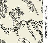 vector illustration sketch... | Shutterstock .eps vector #568776061