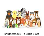 group of pets | Shutterstock .eps vector #568856125